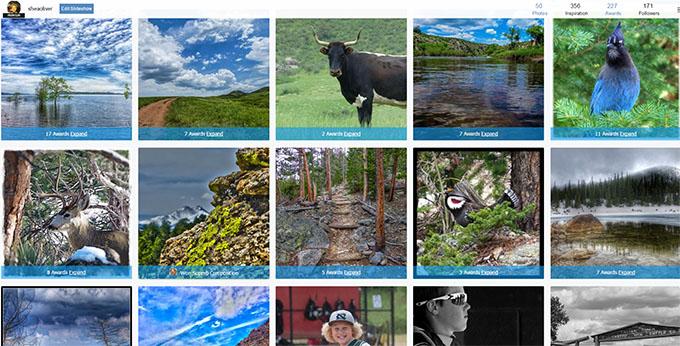 Shea Oliver's Viewbug Award Page